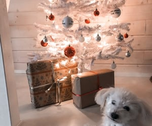 christmas, cozy, and dog image