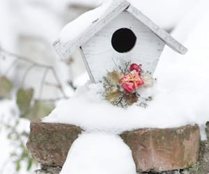 bird house, snow, and winter image