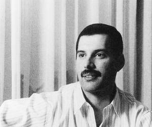 vintage, b&w, and Freddie Mercury image