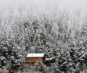cabin, cold, and december image