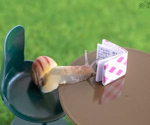 lovely and snail image