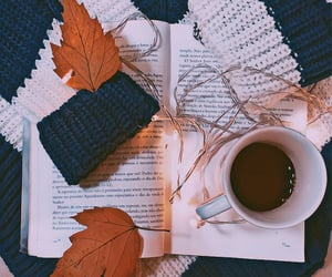 aesthetic, autoral, and autumn image
