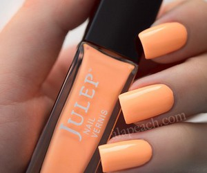 nails, orange, and nail polish image