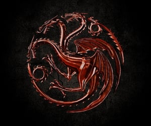 blood, house, and dragon image