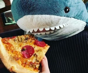 adorable, pizza, and sherk image