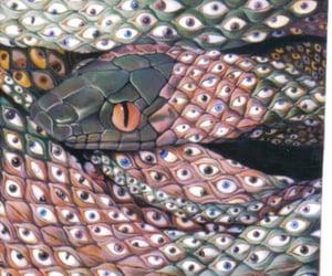 snake, eyes, and art image