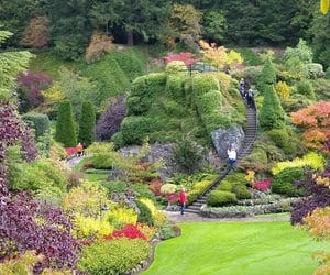 gardens, doyouwantthis, and alongcamelife image