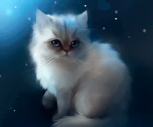 fantasy, kitty, and gif image