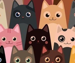 cats, felinos, and mascotas image