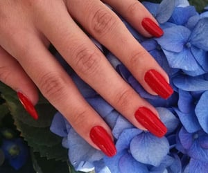 fire, flowers, and long nails image