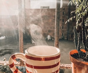 aesthetic, christmas, and coffe image
