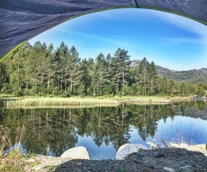 camping, forest, and ocean image