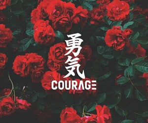 arabic, books, and courage image