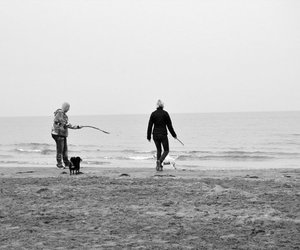 beach, family, and b w image