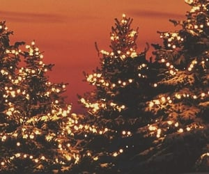 article, holiday, and lights image