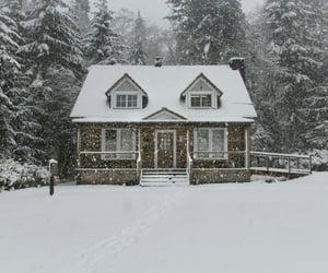 christmas, cold, and snow image