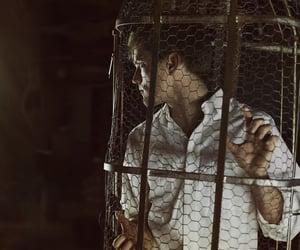 50mm, captive, and dark image