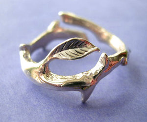 jewelry, ring, and silver ring image