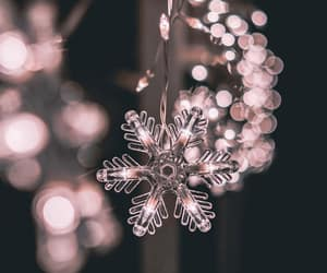 aesthetic, christmas lights, and fairy lights image