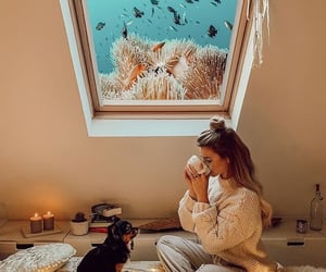 animals, cozy, and dog image