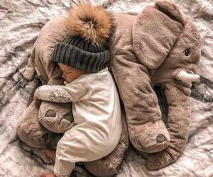 baby, beautiful, and elephant image