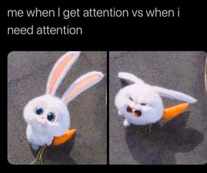 angry, attention, and boyfriend image