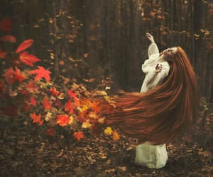 autumn, leaves, and hair image