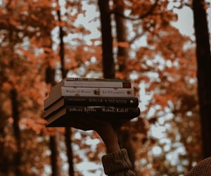 autumn, pumpkin, and tumblr image