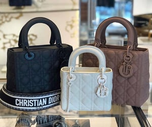 Christian Dior, fashion, and dior image