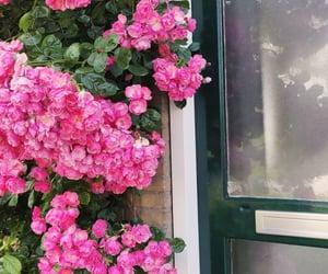 aesthetics, door, and pink image