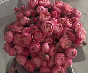 beautiful, flowers, and pink image