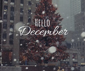 christmas, city, and december image