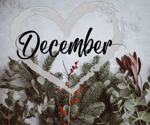 december, hello, and month image