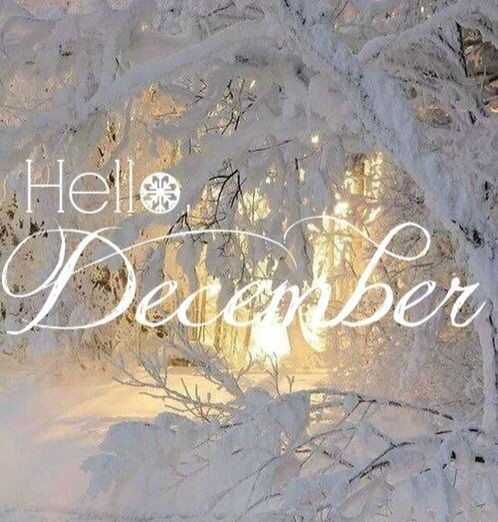 Image de december, hello, and winter