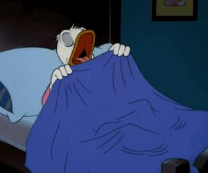 bed, cartoon, and donald duck image