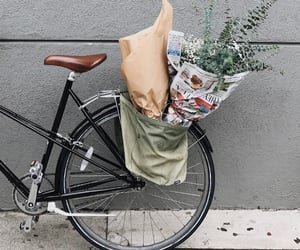 bicycle, flower, and mornings image