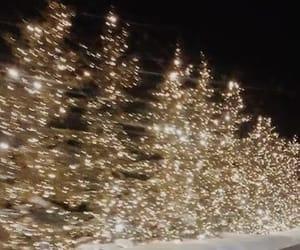lights, christmas, and christmas tree image