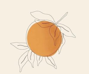 art, flowers, and orange image
