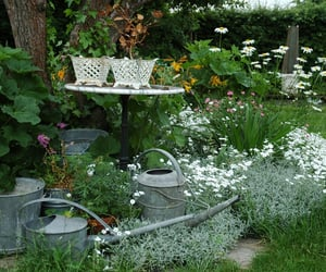 garden and gardening image