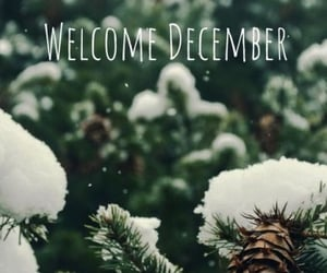 december, welcome, and snow image