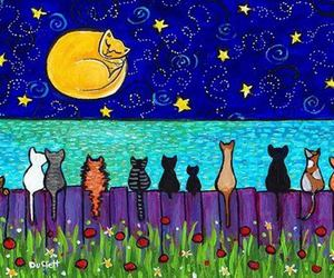 cat, moon, and stars image