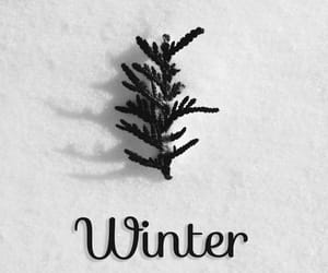 hello, wallpaper, and winter image