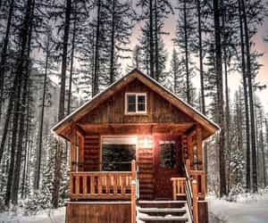 cabin, forest, and home image