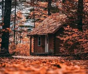 cabin, house, and mountains image