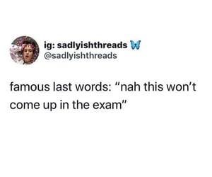 exam, funny, and life image