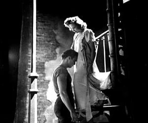 a streetcar named desire image