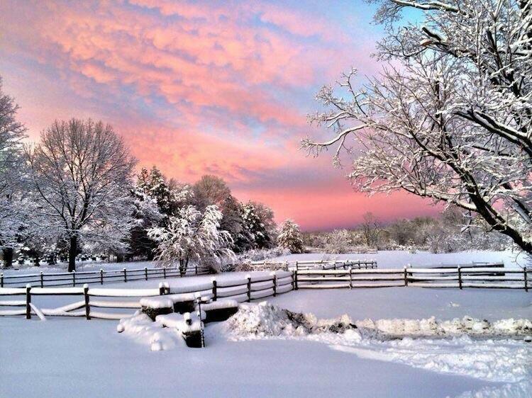 beautiful, winter, and like image