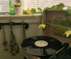 music, records, and vinyls image