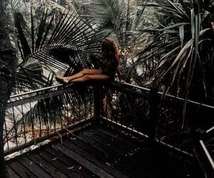 girl, holidays, and palmtrees image