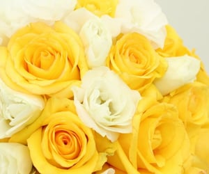 bouquet, flores, and flowers image